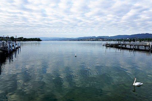City, Europe, Zurich, Switzerland, Summer, River, Lake