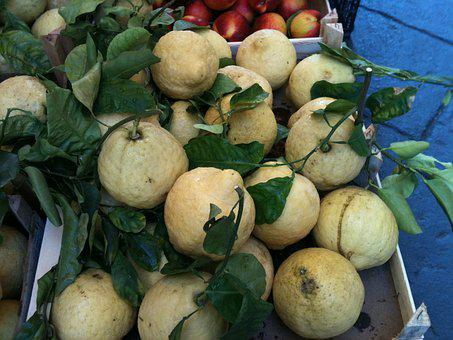 Lemons, Sorrento, Italy, Citrus, Food, Fresh, Fruit
