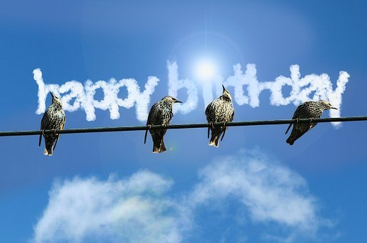 Birthday, Map, Birds, Clouds, Font, Stare, Sparrows