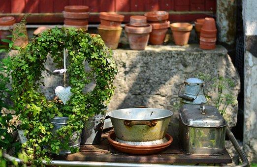 Green Plant, Entwine, Wreath, Heart, Garden, Still Life