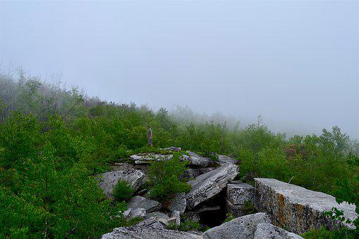 Fog, Forest, Stone, Mountain, Nature, Mist, Landscape