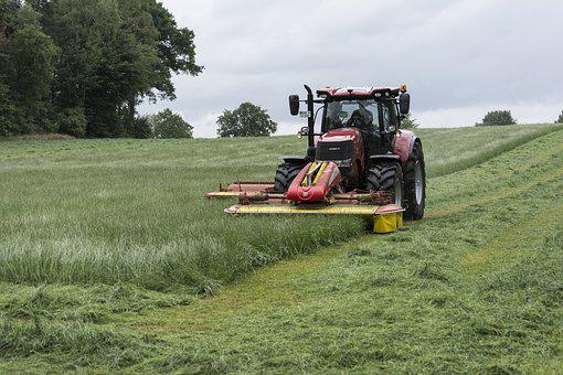Lawn Mowing, Tractor, Mow, Farmers, Haymaking, Farmer