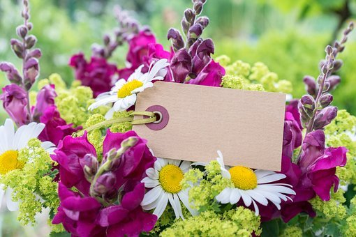Bouquet, Map, Message, Embassy, Floral Greeting, Plant