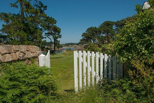 Brittany, Bréhat, Island, Portal, Ferns