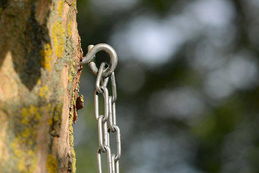 Chain, Eye, Tree, Bokeh, Safety, Ring, Steel, Iron
