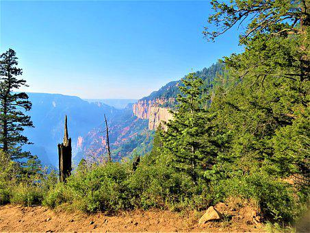 North Rim Grand Canyon, Morning, Hike, Scenic