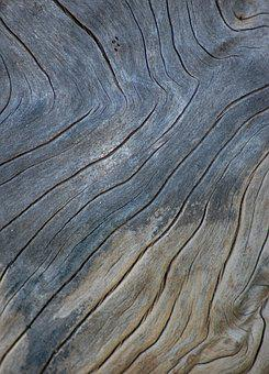 Timber, Wood Texture Background, Grain, Nature