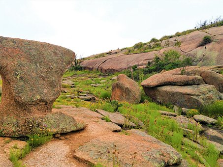 Pink Granite, Rock Formation, Wild Flowers