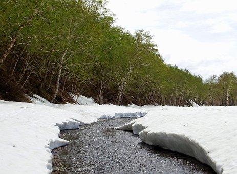 Spring, Winter, Summer, Greens, Meltwater, Creek, Snow