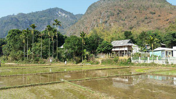 Strabismus, Mai Chau, Hao Binh