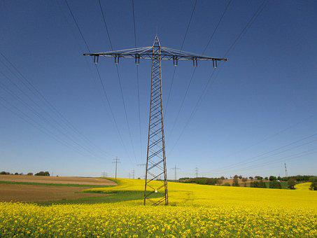 Oilseed Rape, Current, Strommast, Electricity