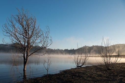 Fog, Lake, Calm, Sunrise, Water, Landscape, Nature