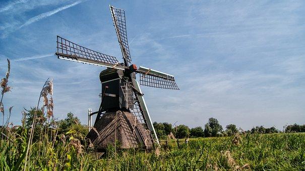 Mill, Wicks, Wind Mill, Historic Building, Dutch Mill