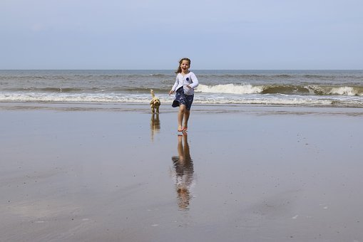 Girl, Child, Young, Reflection, Sand, Beach, Dog, Ball