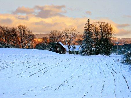 Vermont Farm, Farm, Vermont, Landscape, Nature, Scenic