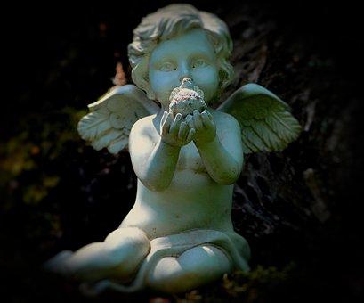Angel, Wing, Motif, Nikon, Mystical, Figure, Angel Face