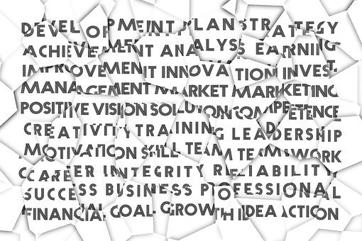 Success, Business, Professional, Development, Plan