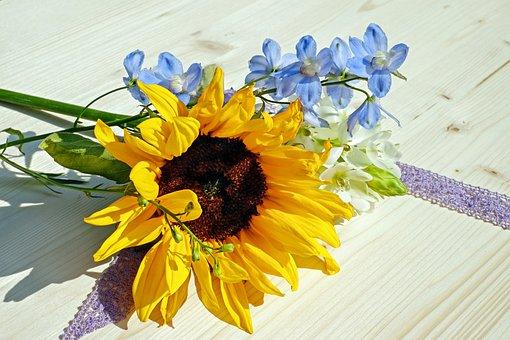 Sun Flower, Flower, Blossom, Bloom, Yellow, Summer