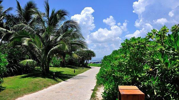 Blue Sky, Cloud, Beach, Coast, Hotel, Tourism, Travel