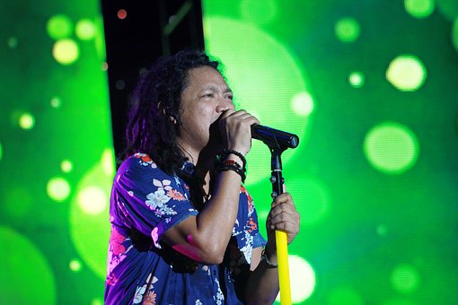 Concert, Reggae, Music, Party, Live, Show, Musician