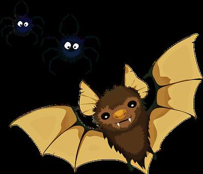 Animals, Bat, Decoration, Halloween, Spiders, Vampire
