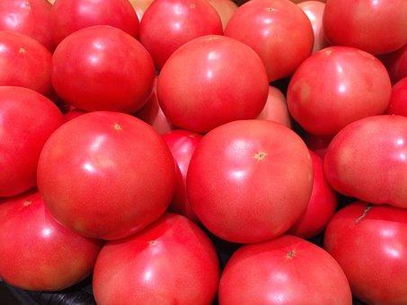Tomato, Display, Red, Young And Vivacious, Vivid