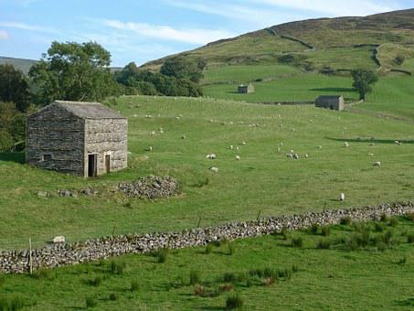 Barn, Stone, Yorkshire, Dales, Rural, Countryside