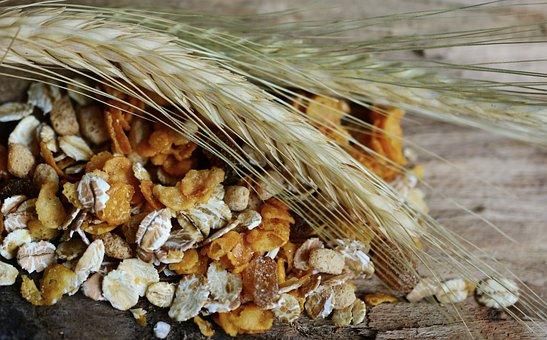 Cereals, Cornstalk, Muesli, Spike, Nutrition, Grain