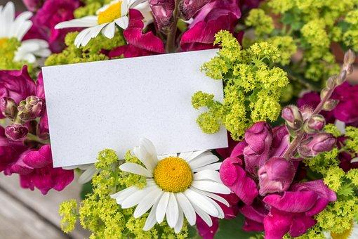 Greeting, Greeting Card, Wishes, Greetings, Postcard