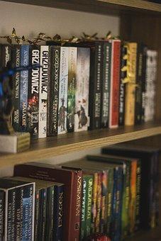 Book, Library, Shelf, Shelves, Reading, Education