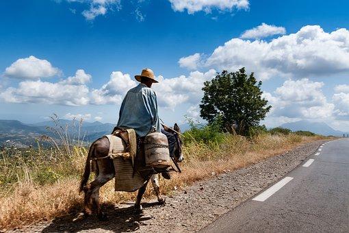 Mountains, Kabiley, Algeria, Donkey, Clouds, Sky