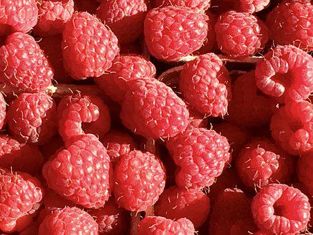 Raspberry, Fruit, Berries, Red, Sweet, Close Up, Nature