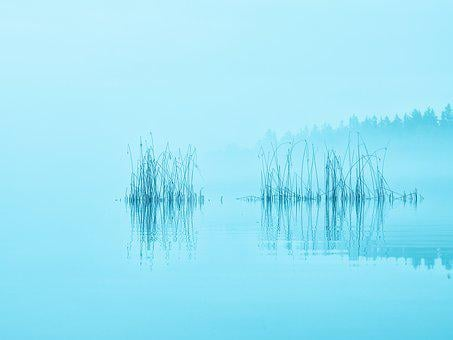 Morning, Mist, Lake, Silhouette, Nature, Sky, Water