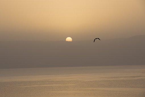 Sea Of Galilee, Israel, Water, Kinneret, Lake, Galilee