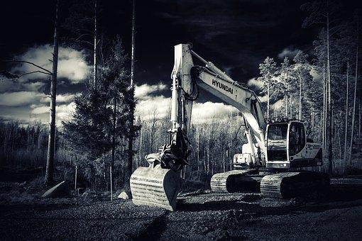 Excavator, Forest, Construction Machine