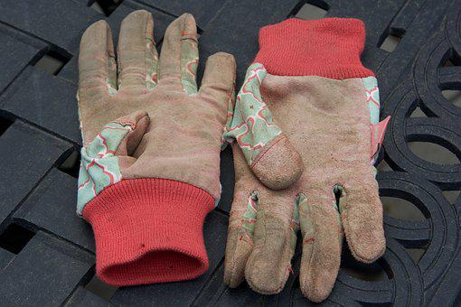 Gloves, Garden, Dirty, Gardening, Agriculture, Work