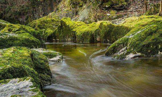 Ingleton, Waterfall, Trail, Moss, Green, Stream, River