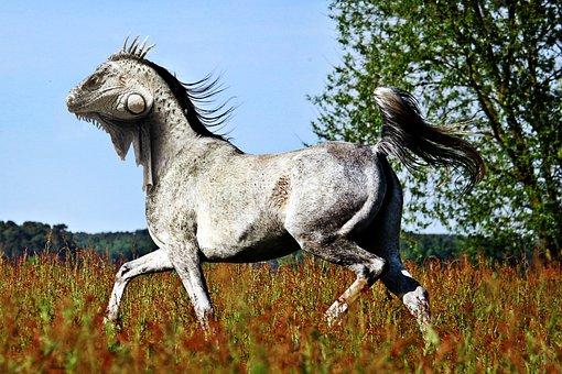 Horse, Lizard, Pfechse, Photoshop, Photoshop-animal