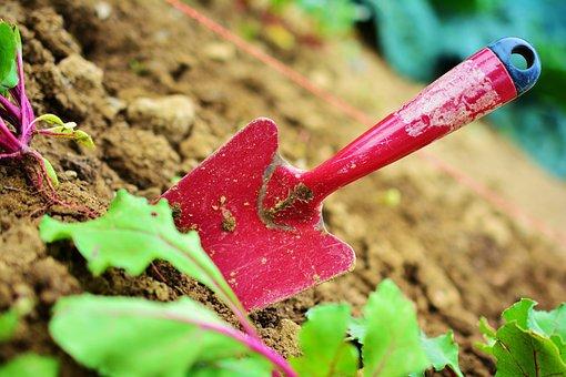 Gardening, Garden, Blade, Plant, Garden Tools
