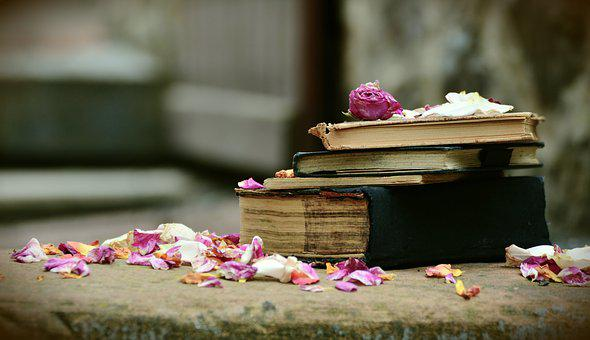 Books, Old Books, Antiquariat, Used, Used Books