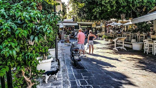 Rhodes, Greece, Greek, Stray, Cat, Tourism, Tourist