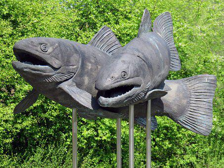 Carp, Fish, Sculpture, Art, Monument, Sculptor