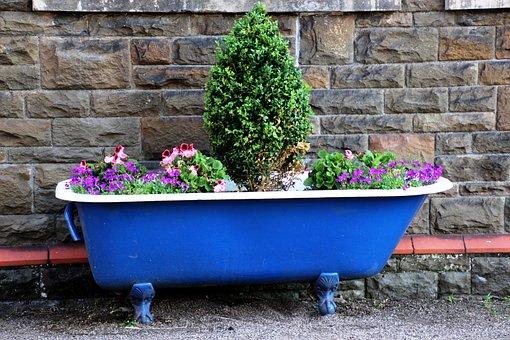 Bath, Pot Garden, Garden, Pot, Gardening, Plant, Design