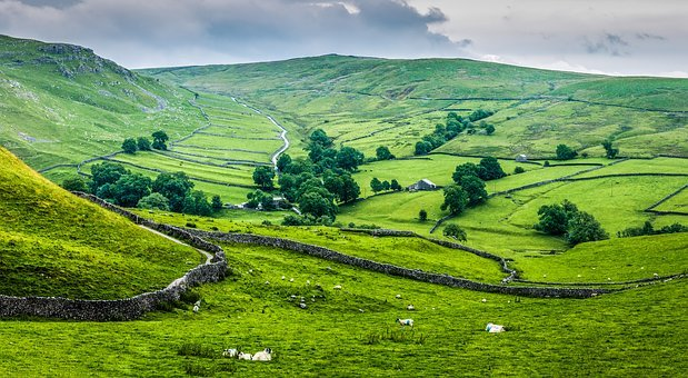 Cry Stone Walls, Yorkshire, Dales, Malham, Countryside