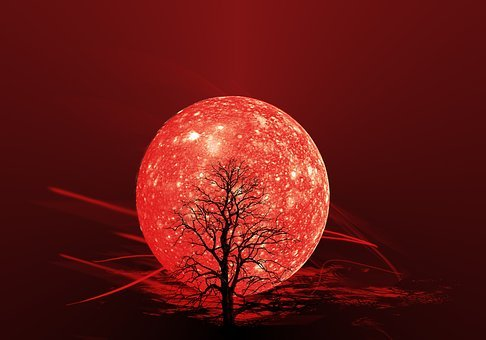 The Background, Red, Moon, Wallpaper, Abstraction, Tree