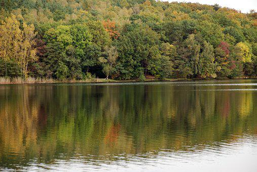 Autumn, Schwerin, Lake, Forest, Nature, Water, Germany