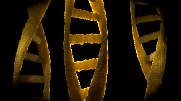 Dna, Dns, Biology, Deoxyribonucleic Acid, Research
