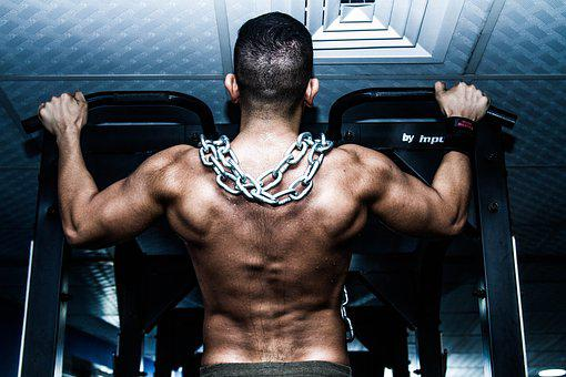 Muscle, Gym, Training