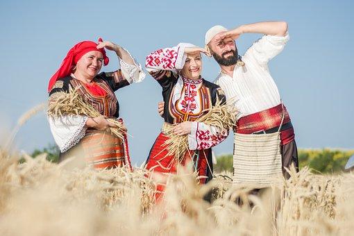 Harvest, Summer, Nature, Food, Agriculture, Farm