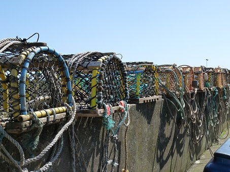 Fish Traps, Sea, Fish, Fang, Catch Fish, Scotland